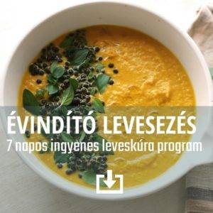 5EF.leveskúra.Ebook